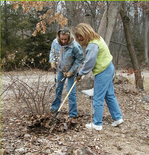 Terri and Janet Raking